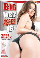 Watch Big Wet Asses 16 movie