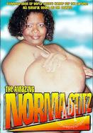 Watch The Amazing Norma Stitz movie